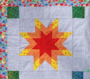 """for the 'Abundance"""" picnic quilt"""