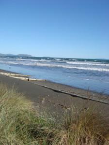 Raumati Beach..looking south into the wind.